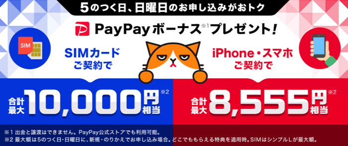 ワイモバイルで最大12,000円相当のPayPayボーナスがもらえる
